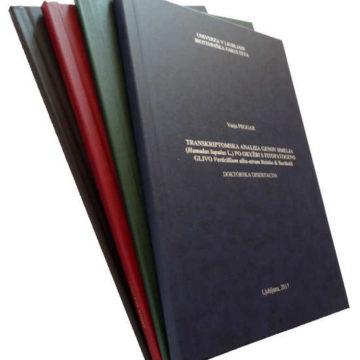 Vezava diplomske naloge že za 15 EUR
